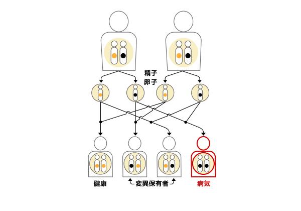 常染色体劣性遺伝形式